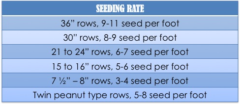 PSC_SEEDING RATE